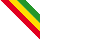 bhansea-logo-band